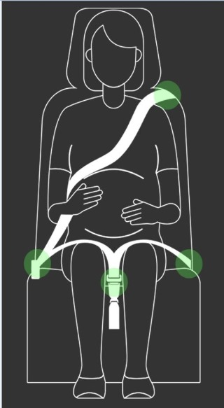 0129 1. 건강관리과 - 문경시, 임산부 전용 차량 안전벨트 2월부터 무료 대여 시행 (1).jpg