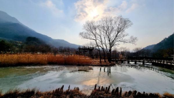 0303 5. 문경새재관리사무소 - 문경생태미로공원 2021년 입장객 1만명 돌파 (1).jpg