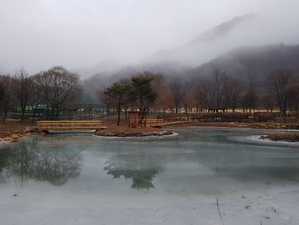 0303 5. 문경새재관리사무소 - 문경생태미로공원 2021년 입장객 1만명 돌파 (2).jpg