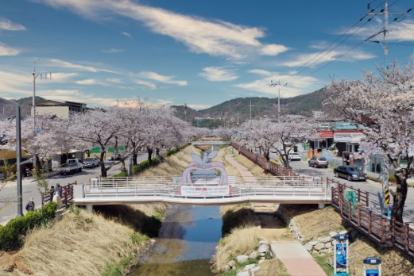0323 1. 관광진흥과 - 문경의 숨겨진 벚꽃 명소 (2) 모전천 산책로.jpg